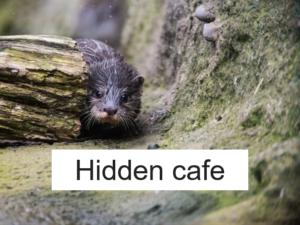 隠れ家カフェ