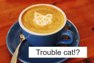 猫がトラブルの原因?