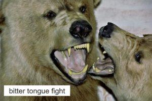 壮絶な舌戦!