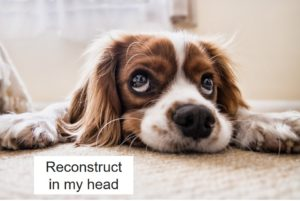 自分の頭で再構築する